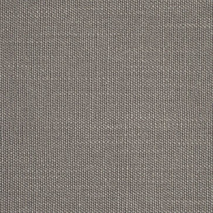 Scion Plains One Taupe Grey